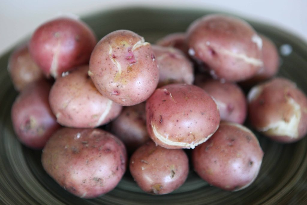 Cook whole, unpeeled, potatoes. You could submerge them in water and boil for 20-30 minutes, or pressure cook for 10 minutes. Drain.
