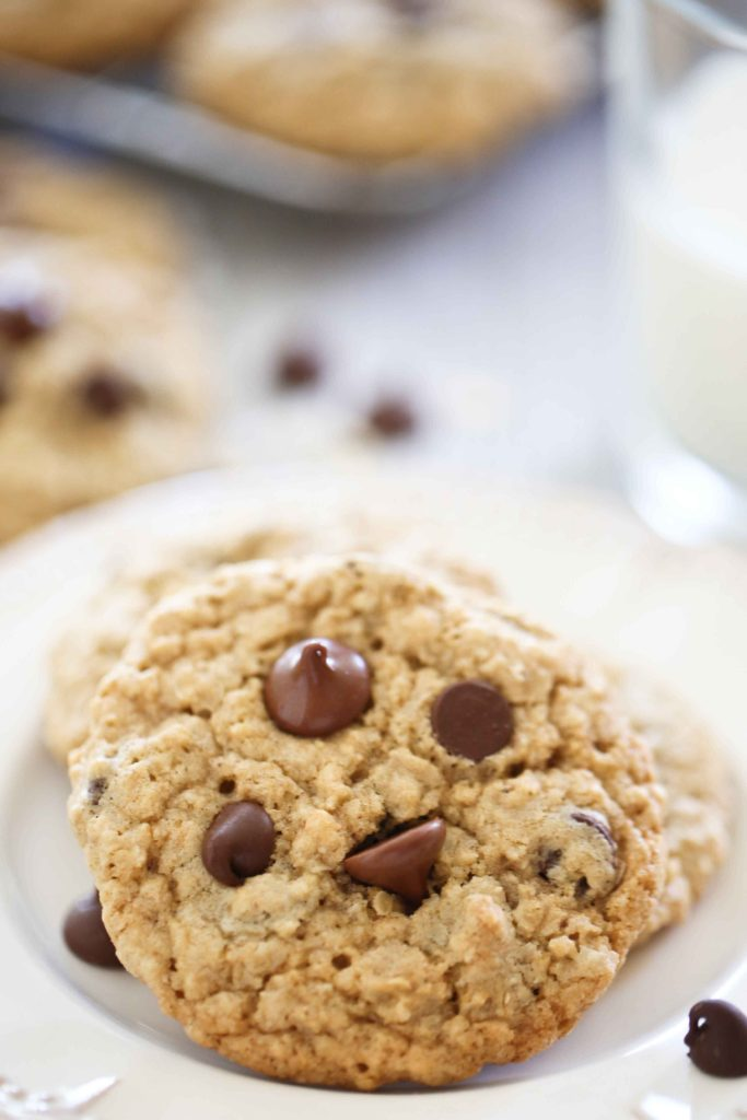 Chewy Choc~Oat~Chip Cookies and a glass of milk on a picnic table